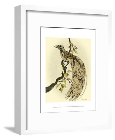 Greater Bird I-Catherine Kohnke-Framed Art Print
