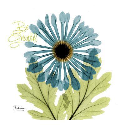 Greatful Chrysanthemum H68-Albert Koetsier-Art Print