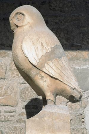 Greek Art. Statue of Owl. Symbol City of Athens. Acropolis Museum. Greece