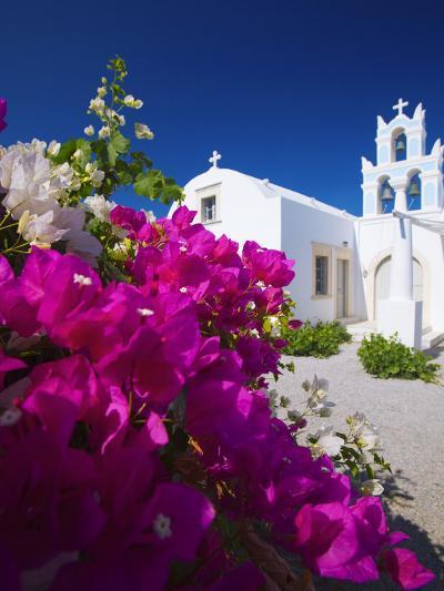 Greek Church and Flowers, Santorini, Cyclades, Greek Islands, Greece, Europe-Sakis Papadopoulos-Photographic Print