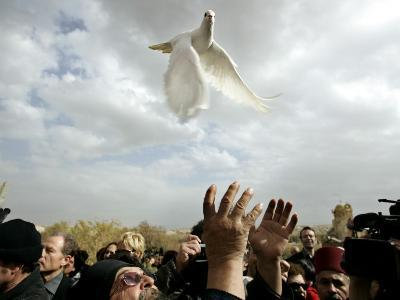 Greek Orthodox Priest Releases a Dove During a Traditional Ceremony at Jordan River Baptismal Site--Photographic Print