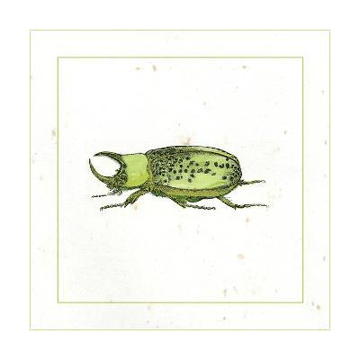 Green Beetle-Vision Studio-Art Print