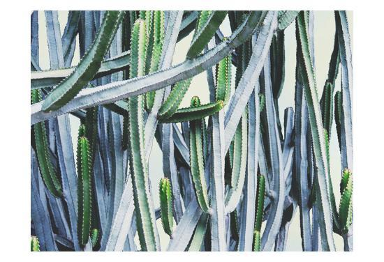 Green Crush I-Elizabeth Urquhart-Art Print