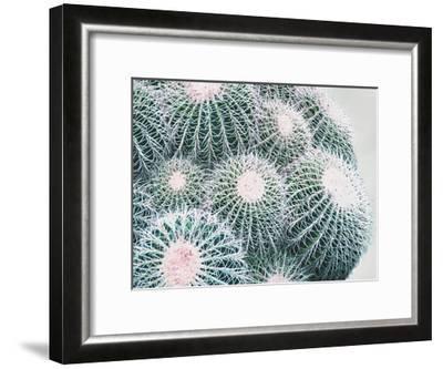 Green Crush III-Elizabeth Urquhart-Framed Art Print