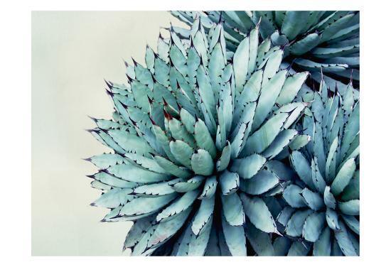 Green Crush IX-Elizabeth Urquhart-Art Print
