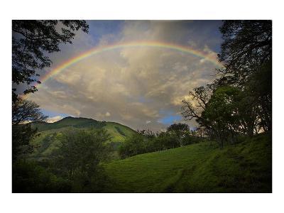 Green Field with Clouds & Rainbow-Nish Nalbandian-Art Print