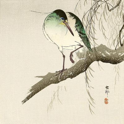 Green Heron on Branch-Koson Ohara-Giclee Print