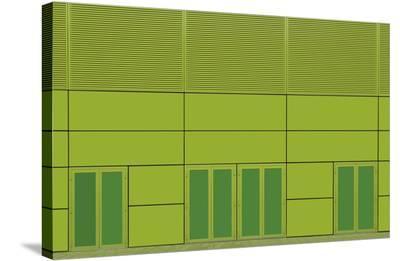 Green Home-Jan Niezen-Stretched Canvas Print
