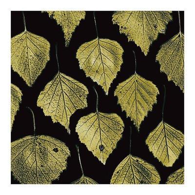 https://imgc.artprintimages.com/img/print/green-leaves_u-l-f8vmzm0.jpg?p=0