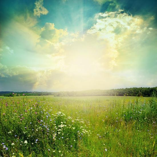 Green Meadow Under Blue Sky With Clouds-Volokhatiuk-Art Print
