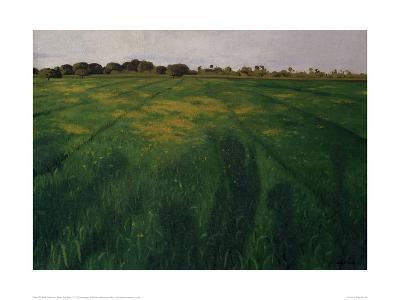 Green Oat Field-F?lix Vallotton-Giclee Print