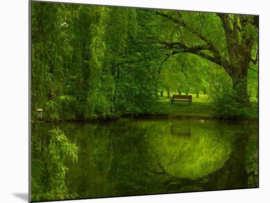 Green World-Irene Suchocki-Mounted Photographic Print