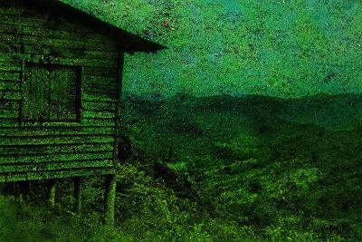 Green-Andr? Burian-Photographic Print