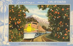 Greetings from California, Train through Orange Groves
