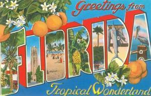Greetings from Florida, Tropical Wonderland