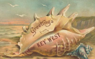 Greetings from Key West, Conch Shell