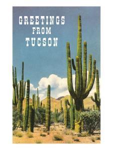 Greetings from Tucson, Arizona, Saguaros