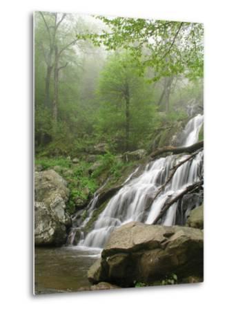 Dark Hollow Falls in Shenandoah National Park