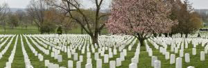 Panorama of Arlington National Cemetery in the Spring by Greg Dale