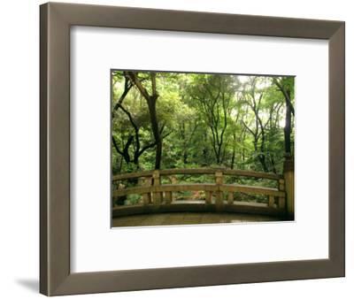 Bridge and Garden at Yoyogi-Koen, Tokyo, Kanto, Japan