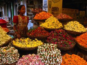 Flower Seller at the New Market., Kolkata, West Bengal, India by Greg Elms
