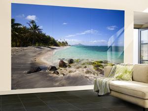 Nisbett Plantation Beach by Greg Johnston