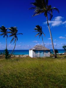 Old Settlement Building by the Shore, Cat Island, Bahamas by Greg Johnston