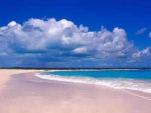 Pink Sand Beach, Harbour Island, Bahamas by Greg Johnston
