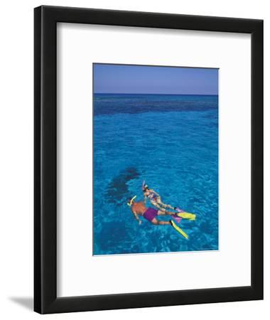 Snorkeling in Clear Waters, Bahamas, Caribbean