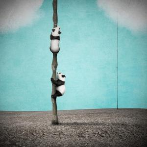 Beanstalks by Greg Noblin