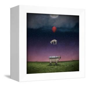 Soft Landing by Greg Noblin