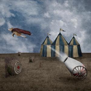Take Flight by Greg Noblin