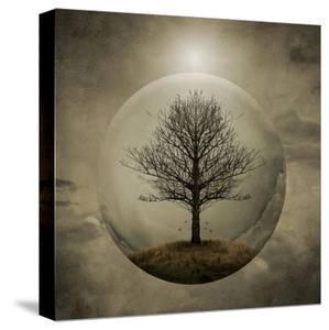 Tree of Life by Greg Noblin