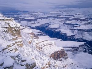 Snow Covered Grand Canyon, South Rim, Grand Canyon NP, Arizona by Greg Probst