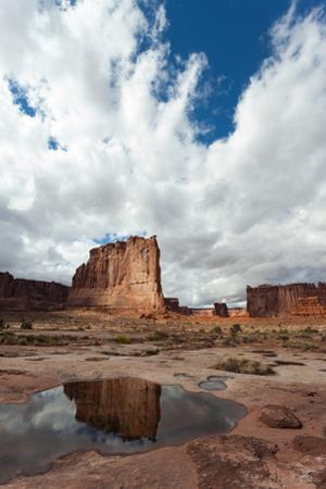 A Sandstone Tower Called The Organ Is Reflected In A Puddle Formed By A Recent Downpour by Greg Winston