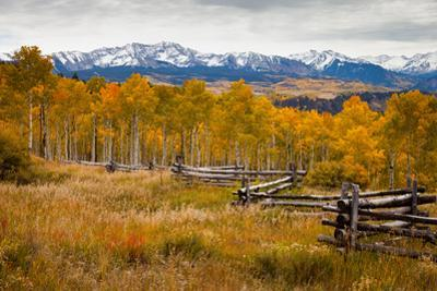 A Stacked Rail Fence In Front Of The Snow Capped San Juan Mountains Flanked By Aspen Forests by Greg Winston