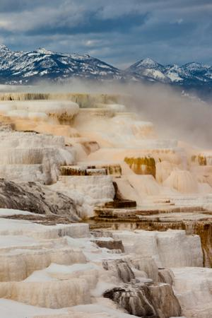 A View Of The Colorful Travertine Terraces Of Canary Spring Of Mammoth Hot Springs by Greg Winston