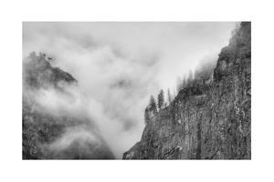 Dark Trees Perched on Cliffs Stand Out Against a Gloomy Sky, Yosemite National Park, California by Greg Winston