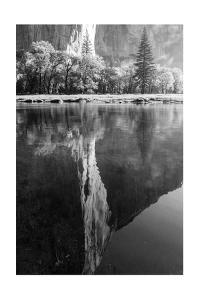 El Capitan Reflected in the Merced River by Greg Winston