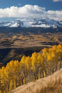Mount Wilson In The Snow Capped San Juan Mountains Flanked By Fall Colored Aspen Forests by Greg Winston