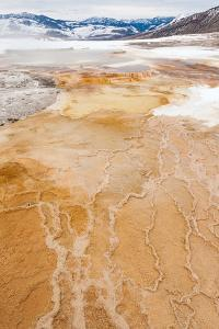 The Patterns In The Travertine Terraces Of Canary Spring Of Mammoth Hot Springs by Greg Winston