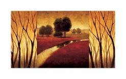 Tranquil Radiance II-Gregory Williams-Giclee Print