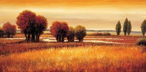 Golden Reflections I by Gregory Williams