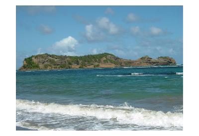 Grenada 4-Sheldon Lewis-Art Print