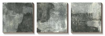 Grey Abstract-Elena Ray-Canvas Art Set