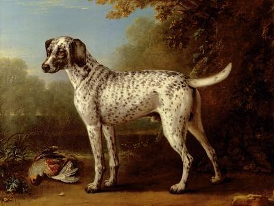 Grey Spotted Hound, 1738-John Wootton-Giclee Print