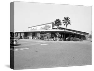 Donald Nixon Properties by Grey Villet