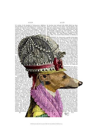 Greyhound in 16th Century Hat-Fab Funky-Art Print