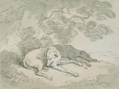 Greyhounds Asleep-Thomas Rowlandson-Giclee Print