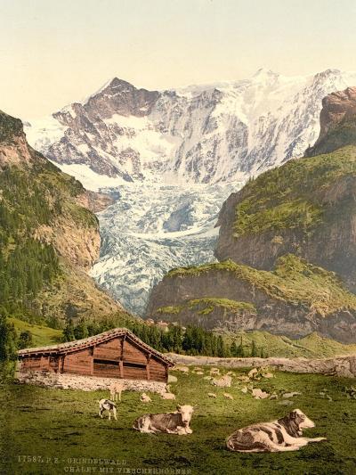 Grindelwald, Chalet and Vischerhorn, Bernese Oberland, Switzerland, C.1890-C.1900--Giclee Print